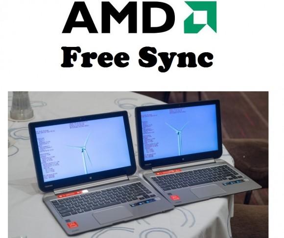 Amd-Freesync1