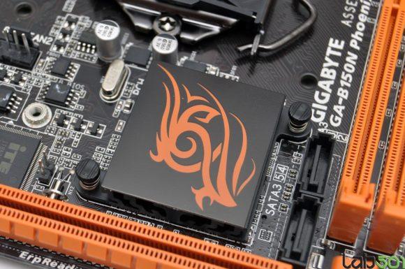phoenix-08